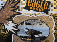 Travel Scrapbook 25 – Eagle Count