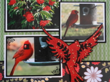 Everyday Life Scrapbook 40 – Garden & Birds