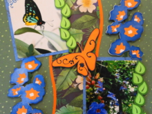 Travel Scrapbook 34 – Butterfly World, Florida