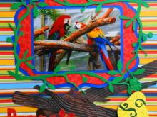 Travel Scrapbook 34 – Butterfly World, Florida