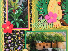 Travel Scrapbook 35 – Florida Botanical Gardens